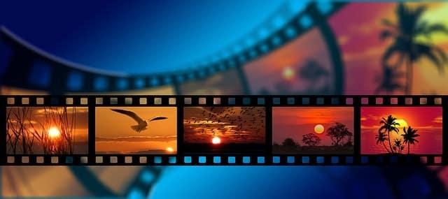 videos gratis