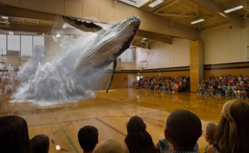 realidad aumentada ballena holografica